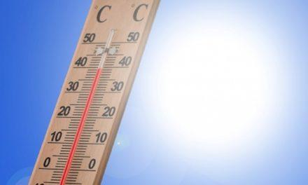 Δελτίο Τύπου Ο.Κ.Π.Α.Π.Α. : «Διάθεση κλιματιζόμενων αιθουσών λόγω καύσωνα»